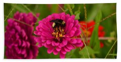 Pink Zinnia And Bee Beach Towel