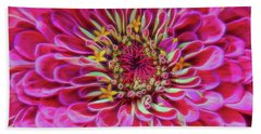 Beach Towel featuring the photograph Pink Zinnia Glow by Beth Sawickie