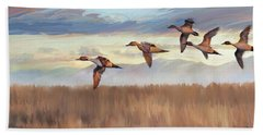 Pintail Fly By Beach Towel by Rob Corsetti