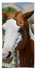 Beach Towel featuring the photograph Pinto In The Pasture Portrait  by Barbara Snyder