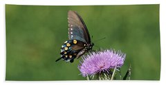 Beach Towel featuring the photograph Pipevine Swallowtail by Sandy Keeton
