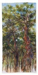 Pitch Pines, Cape Cod Beach Towel