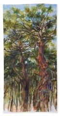 Pitch Pines, Cape Cod Beach Towel