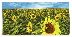 Plains Sunflowers Beach Towel