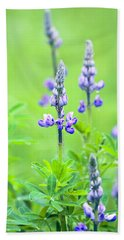 Lupine With Web Beach Towel