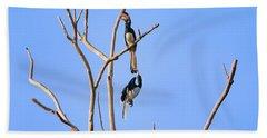 Play Time Hornbills Beach Sheet