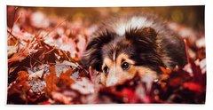 Playful Autumn Dog Beach Towel