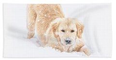 Playful Puppy Beach Sheet