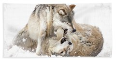 Playful Wolves In Winter Beach Towel