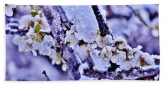 Plum Blossoms In Snow Beach Towel