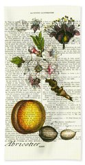 Plum Fruit And Blossom Plant Antique Illustration Beach Towel