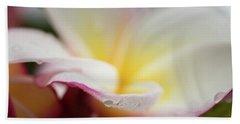 Plumeria 5 Beach Sheet by Leigh Anne Meeks