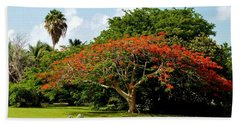 Poinciana Beach Towel