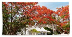 Poinciana Cottage Beach Sheet by Amar Sheow