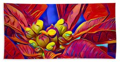 Poinsettia Closeup Beach Towel