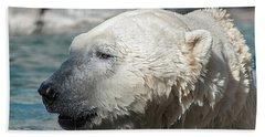 Polar Bear Club Beach Towel