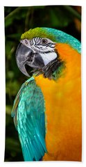 Polly II Beach Towel