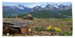 Beach Towel featuring the photograph Polychrome Pass, Denali by Zawhaus Photography