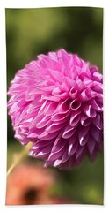 Pompon Dahlia Beach Sheet