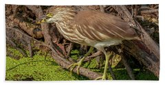Pond Heron With Fish  Beach Towel
