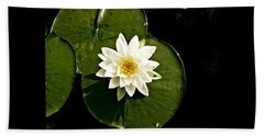 Pond Lily Beach Sheet