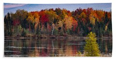 Pondicherry Fall Foliage Reflection Beach Towel