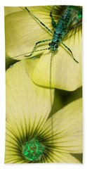 Beach Towel featuring the photograph Pop Macro No. 2 by Laura Melis