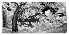 Beach Towel featuring the photograph Poplar On The Edge Of A Field by Dan Jurak