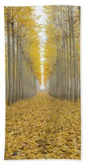 Poplar Tree Farm One Foggy Morning In Fall Season Beach Sheet
