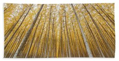 Beach Towel featuring the photograph Poplar Tree Farm Symmetry In Oregon by Jit Lim