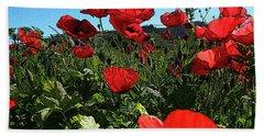 Poppies. Beach Towel by Don Pedro De Gracia