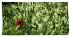 Poppies In Wheat Beach Sheet by Raffaella Lunelli