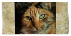 Portrait Of A Cat Beach Towel