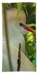 Portrait Of A Cattle Egret Beach Towel