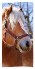 Beach Sheet featuring the photograph Portrait Of A Haflinger - Niko by Angela Rath