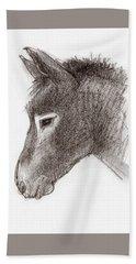 Portrait Of A Mule Beach Sheet