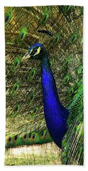 Beach Sheet featuring the photograph Portrait Of A Peacock by Jessica Brawley