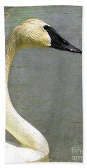 Portrait Of A Pond Swan Beach Towel