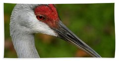 Portrait Of A Sandhill Crane Beach Towel