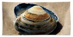 Portrait Of A Seashell Beach Towel