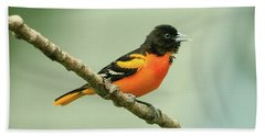 Portrait Of A Singing Baltimore Oriole Beach Sheet