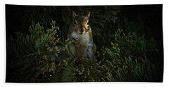Portrait Of A Squirrel Beach Towel