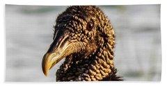 Portrait Of A Vulture Beach Towel