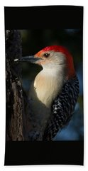 Portrait Of A Woodpecker Beach Sheet