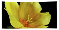 Beach Towel featuring the photograph Portrait Of A Yellow Purslane Flower by David and Carol Kelly