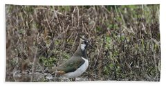 Portrait Of Beautiful Lapwing Bird Seen Through Reeds On Side Of Beach Towel by Matthew Gibson
