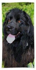Portrait Of Sierra Beach Sheet