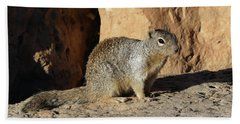 Posing Squirrel Beach Towel