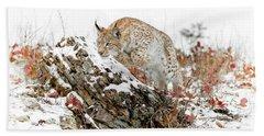 Pouncing Siberian Lynx Beach Towel
