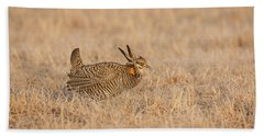 Beach Towel featuring the photograph Prairie Chicken 7-2015 by Thomas Young